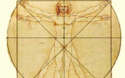 Il significato del test muscolare